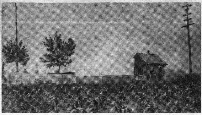 Wayne Railroad Station, with surrounding cornfield, in the 1860's.