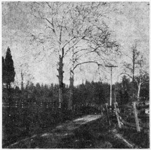 18_image02
