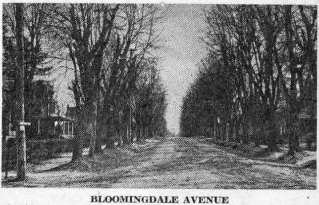 This is a view of the block extending south from Lancaster avenue to West Wayne avenue, as it looked when its large and pretentious houses were completed in the late 1800's. This might be called Wayne's first building operation, and was conceived by George W. Childs and Anthony J. Drexel, prominent business men of Philadelphia.