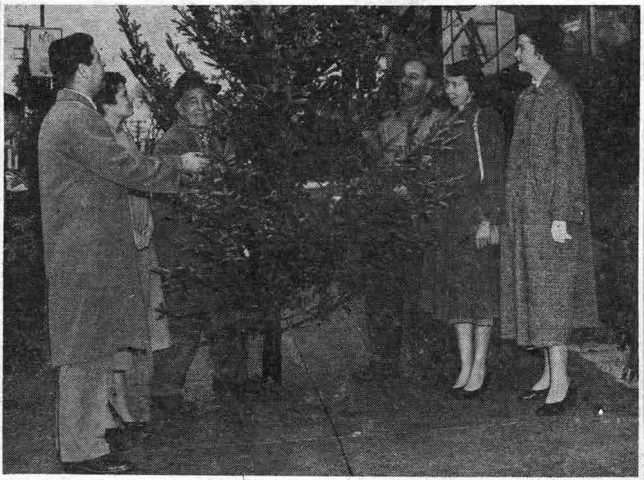 "Members of the Wyeth Laboratory committee, who were arranging a party for employees' children, given December 15, in the Rowland School, select a tree for the occasion from Hyacinth D'Ignazio on the ""Fronefield Building Corner."" From left to right, with Hyacinth and Hyacinth Jr., are Howard Gear, Peggy McGee, Virginia Rutledge and Charlene Hennessey."